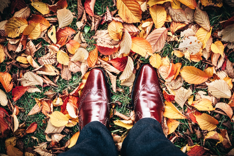 Man in leaves at a Gold coast fall events